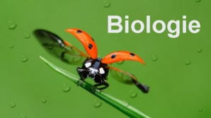 Subiecte BAC Biologie 2016