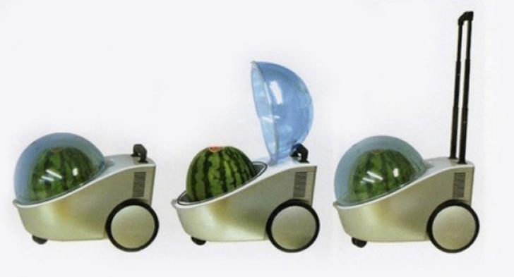 Cele mai ciudate invenţii, de care lumea nu are nevoie. Cum să deţii aşa ceva?