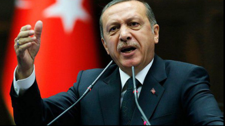 Puci Erdogan