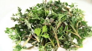 Această plantă distruge 98% din celulele canceroase. Se găseşte şi în România, pe toate drumurile