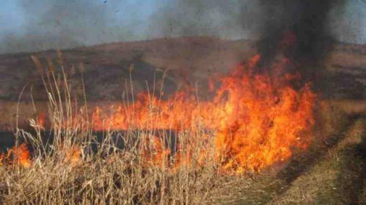 Stare de urgenţă în Bulgaria, din cauza unui incendiu de vegetaţie