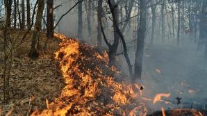 Incendiu devastator într-o staţiune din Spania: peste 1000 de oameni, evacuaţi