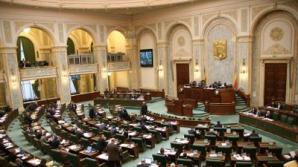 PNL face plângere penală: Semnătura senatorului Dumitru Oprea a fost falsificată