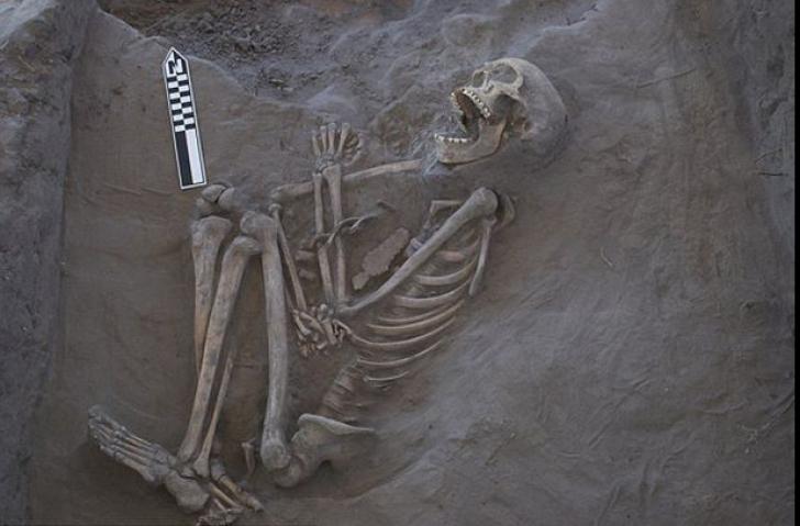 Au găsit un schelet vechi de 800 de ani. Când au privit mai bine craniul, au amuțit. Ce avea pe el