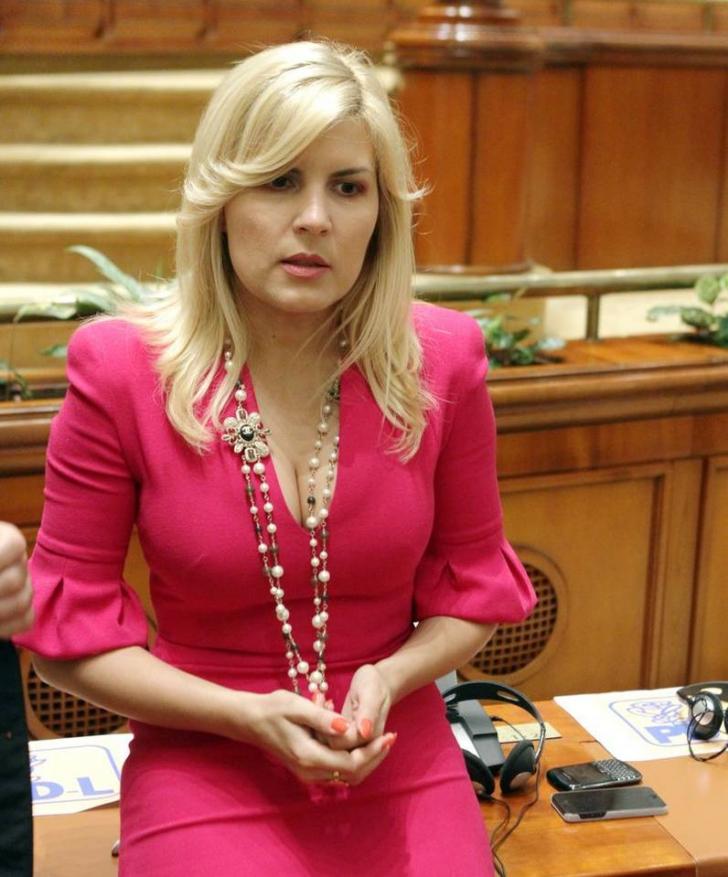 Elena Udrea, după declaraţiile date la DNA: Vasile Blaga era ocolit!