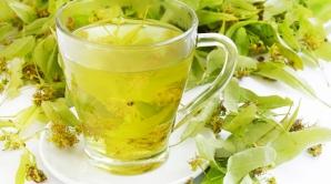 De ce este bine să bei o cană de ceai de tei în fiecare seară. Efectele sunt miraculoase