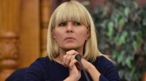 """""""Gala Bute"""". Elena Udrea cere notele informative ale SRI despre """"situaţiile"""" angajaţilor şi firme"""