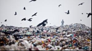 Primăria Sectorului 1 vrea să închidă gropile de gunoi care otrăvesc aerul Capitalei
