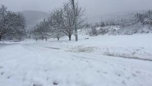 Zăpadă de peste 10 cm în România! Temperaturile, sub zero grade