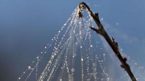 ''Părul de înger'', fenomenul neobişnuit care ar putea avea cauze extraterestre