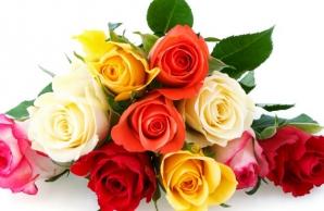 TRUCUL simplu prin care trandafirii rezistă până la o săptămână în vază