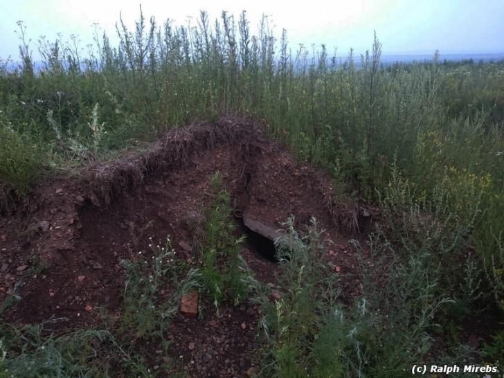 A observat trapa în câmp și a tras de ea. Sub pământ se afla ce nu crezuse că va vedea vreodată