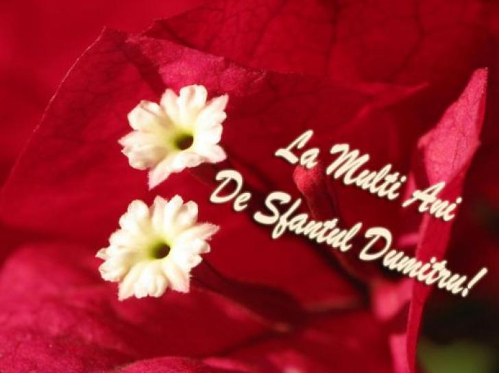 Mesaje, urări, felicitări şi sms-uri de Sfântul Dumitru. Spune-le LA MULŢI ANI celor dragi!