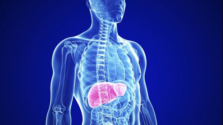5 simptome ascunse ale bolilor de ficat, despre care nimeni nu vorbește