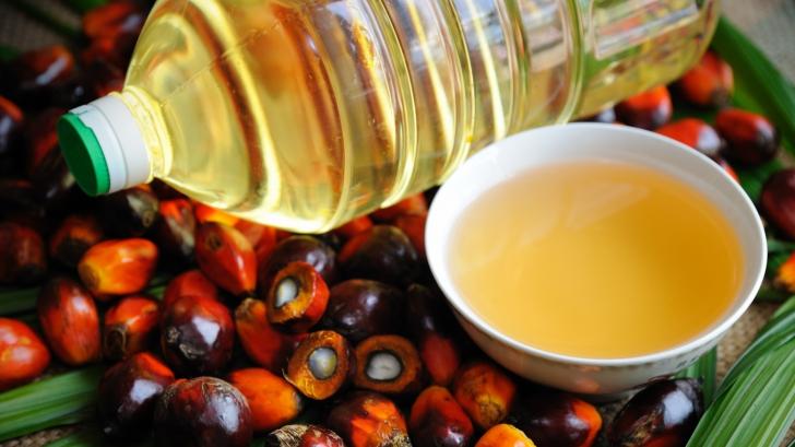 Adevărul ascuns din spatele uleiului de palmier. Dezvăluiri ŞOCANTE despre modul în care este produs