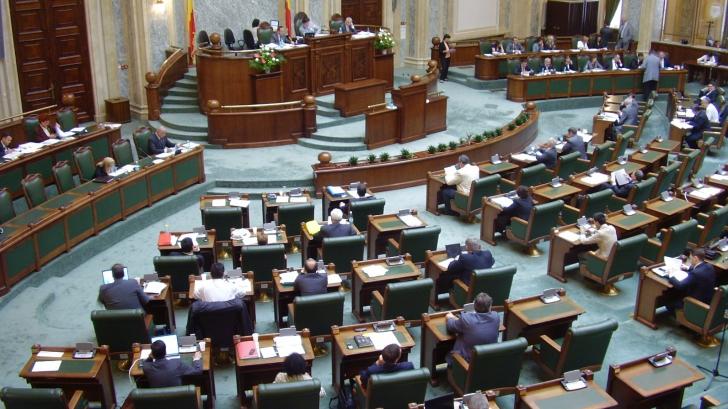 Cine sunt cei 12 senatori PNL care au votat legea antiplagiat