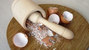 Cel mai bun remediu pentru lipsa de calciu: coajă de ou şi miere. Iată cum se prepară corect!