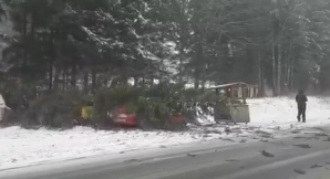 <p>Trafic de coşmar pe Valea Prahovei, din cauza zăpezii. Zeci de maşini blocate, copaci căzuţi</p>