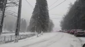 Trafic de coşmar pe Valea Prahovei, din cauza zăpezii. Zeci de maşini blocate, copaci căzuţi