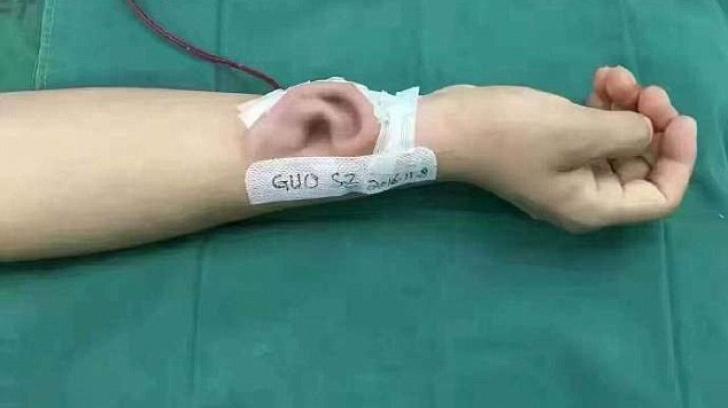Urechea pe mână
