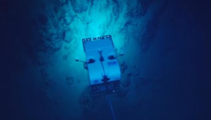 Au început să filmeze în adâncul oceanului. Te trec fiorii când vei vedea ce au descoperit!