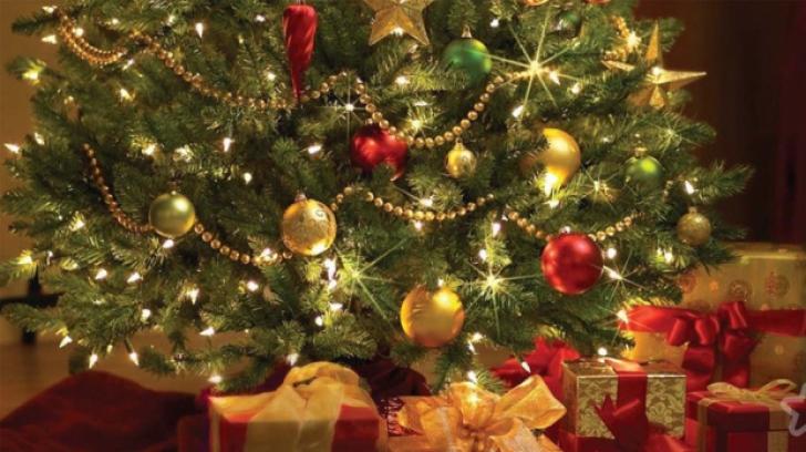 Ce să faci pentru ca bradul de Crăciun să reziste mai mult
