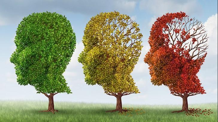 5 trucuri prin care să-ți îmbunătățești memoria la orice vârstă