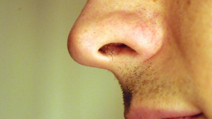 Nu îţi mai smulge niciodată părul din nas! Explicaţia incredibilă a specialiştilor