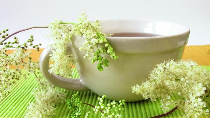 Plante care te lecuiesc de durerile articulare
