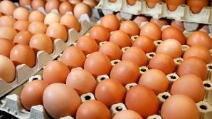 Ai nevoie de un singur ou sa să-ţi controlezi nivelul de zahăr din sânge! Uite ce trebuie să faci