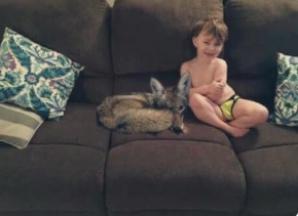 """I-a spus soţului că a găsit """"un căţeluş"""". Când a văzut poza, a îngheţat: """"Ia copilul şi fugi!"""""""