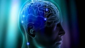 Creierul uman, un mister