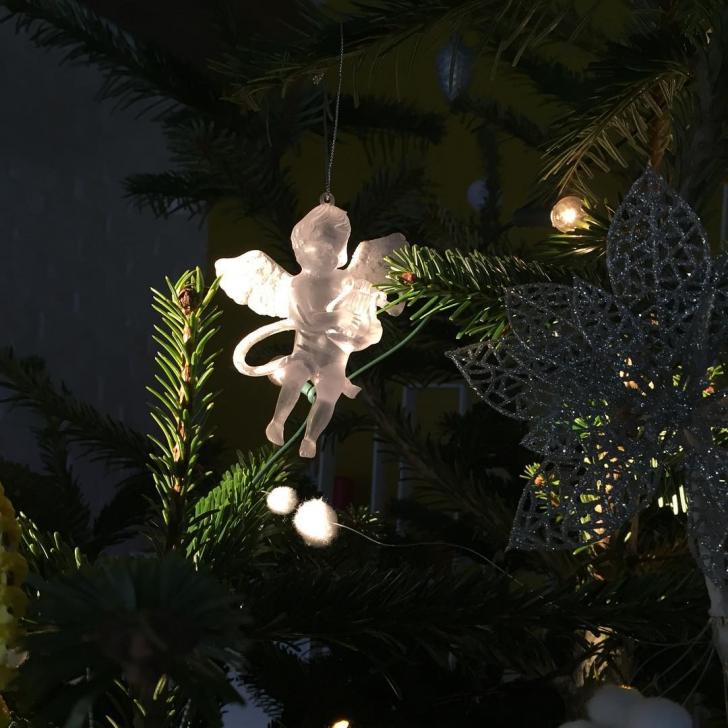 """Adela Popescu și Radu Vâlcan au decorat primul brad """"în trei"""". Cum arată Pomul de Crăciun"""