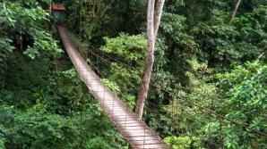 Podul din zona turistică
