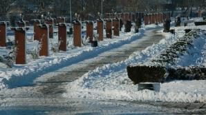 Primăria Capitalei dorește să extindă Parcul Herăstrău