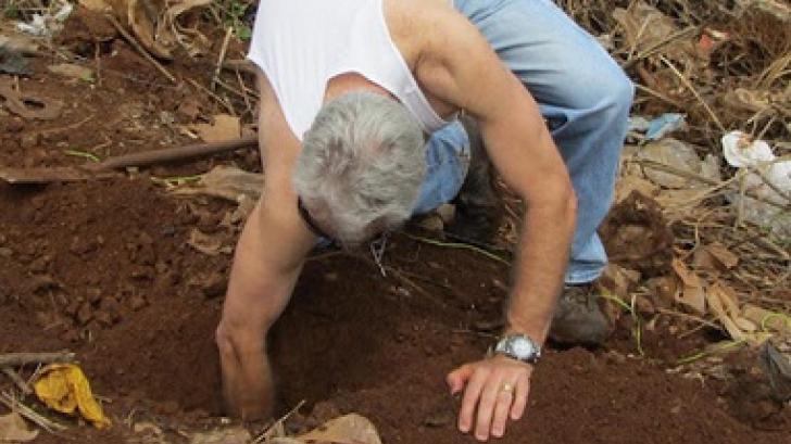 A vrut să renoveze grădina, dar a dezgropat un craniu. O nimica toată pe lângă ce a găsit mai târziu