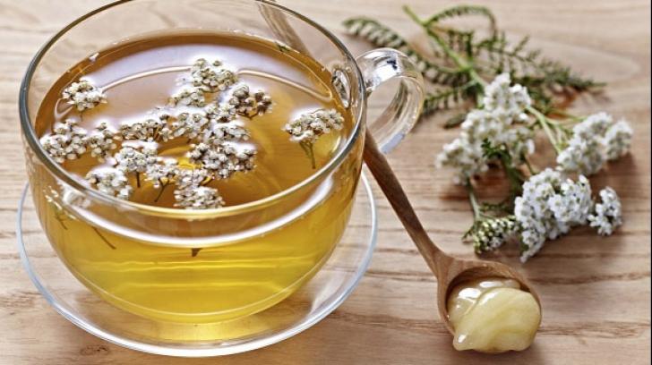 Coada Șoricelului, regina plantelor medicinale din România. Cum s-o consumi în caz de hipertensiune