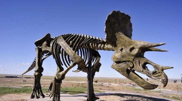 Descoperire uluitoare! Ce au găsit arheologii pe scheletul unui dinozaur de 195 de milioane de ani?