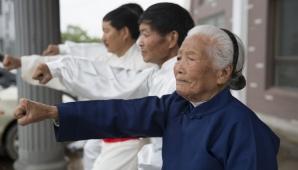 Bunicuta kung-fu
