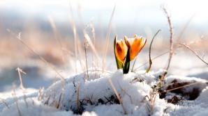 Vremea extremelor. După ger, temperaturile cresc considerabil. Prognoza pe două săptămâni