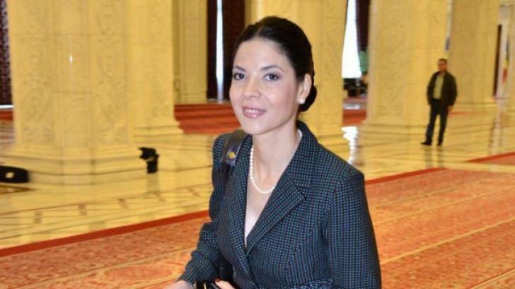 Ana Birchall, ministrul interimar al Justiţiei, a criticat DNA, la bilanţul pe anul 2016