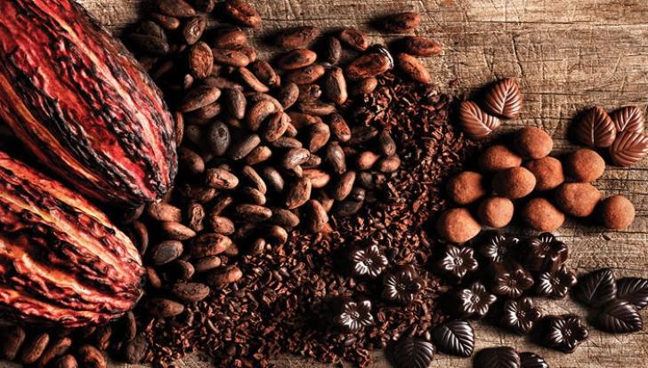 De ce ne place ciocolata? Legătura între ciocolată și laptele matern