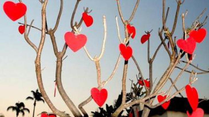 Felicitare antisemită de Valentine's Day. Participanţii la eveniment au fost scandalizaţi