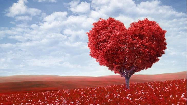 Valentine's Day. Cele mai des oferite cadouri pentru persoana iubită