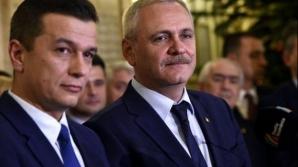 Porcii, o prioritate pentru Guvernul Grindeanu și pentru Parlamentul dominat de PSD