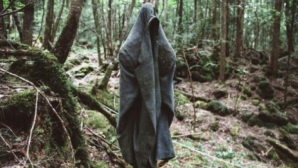 Cea mai terifiantă pădure din lume ascunde un SECRET ORIBIL! Autorităţile nu mai fac faţă! Copacii..