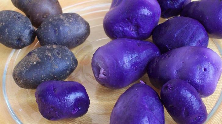 Cartoful mov - leguma din Peru, devenită o afacere profitabilă în România