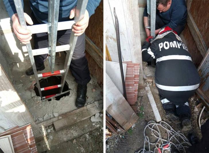 Intervenţie de urgenţă, la Constanţa - un căţeluş căzut într-o hazna adâncă, salvat