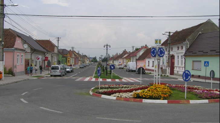 În acest oraș din România ești obligat să plantezi copaci dacă vrei să-ți construiești o casă