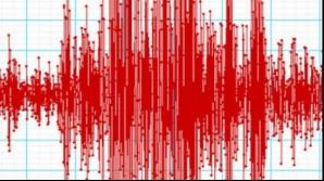 Cutremur în Vrancea, vineri seara